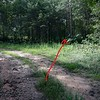In 0.2 mile, the road turns left.   Leave the road,  go straight, enter the woods and look for a trail (path).