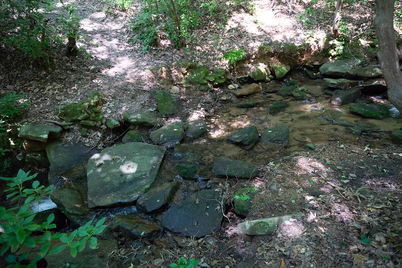 Walk along the left side of the camp site, cross the main creek immediately and pick up a trail heading left.   The trail will meander up the mountain as it switches back and forth to maintain an easy grade.