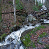 """Straight ahead on the main stream is this waterfall.  Greg Ford has named it Jumble Rock Falls.  This photo was taken from the coordinates of 34.74060, -83.72807.  Maybe """"Rock-N- Wood"""" would be a better name?"""