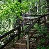 Even though the trail climbs 150 feet, it is an easy quarter-mile walk from the pedestrian bridge.