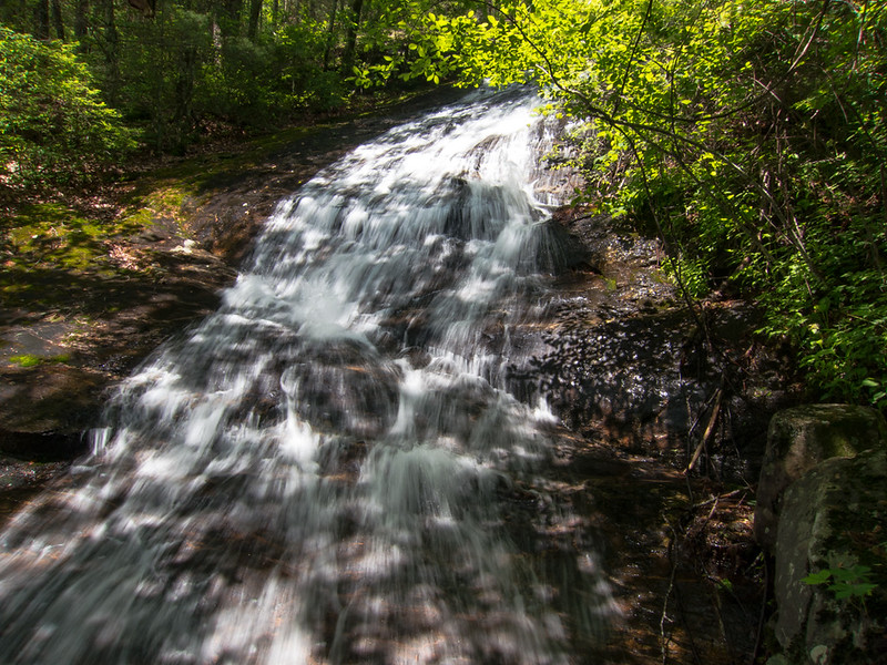 """I could see that the trail ahead was blocked by a very large downfall so rather than continue on and fight,  I scrambled down for a snapshot of (a very small portion of ) the waterfall.  It is the same  waterfall I saw two days before and the one Hiler calls """"Uppermost Falls"""" in his video."""