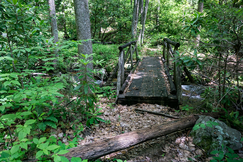 """The trail entered the drainage above the crest of the big waterfall .  This old wooden bridge gives credence to the idea that this was once an official trail.  Once across the bridge, the trail """"disappeared"""".  Rather than hunt for it, I turned upstream."""