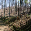 Take the foot bridge by-passing the first ford, past the toilets, through the campground and up the FR 44A road.  The Forest Service has recently conduced a controlled burn on the North and East side of the road.