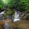 It is a one mile, easy walk to a quasi-gorge on Mt Airy Creek that houses a collage of beautiful  waterfalls.  The first (farthest upstream) drop has a lot of debris.