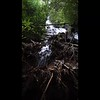 Here is an 18 sec video of the waterfall.