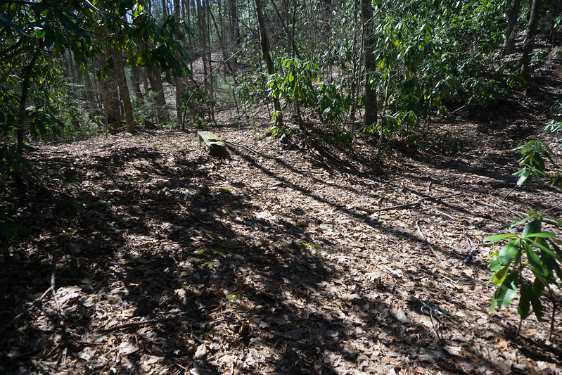 The trail is not steep nor cluttered but it makes a steady climb of some 600 feet elevation up to Joe Gap.