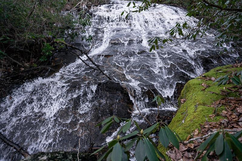 Swaim Cove is one of Frogtown Creek's feeder streams.  It crosses under Hwy 129 south of Neels Gap.