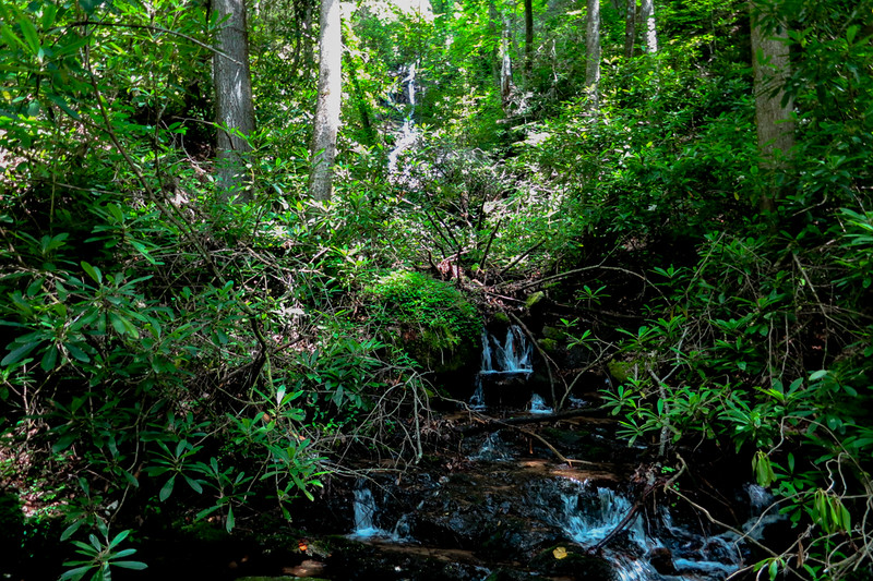 You will hit a flat place at the creek .   Turn right and , in just a few yards, arrive at the confluence of the unnamed tributary and Dover Creek.  This is the first view of today's waterfall.   Although the pic doesn't show it very well, in person, it is a pretty nice setting.