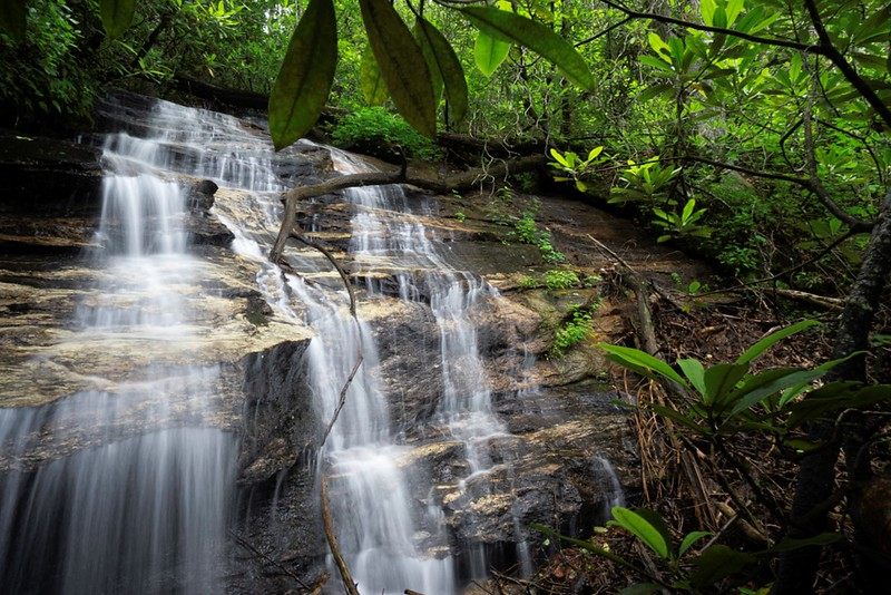 """Becky Branch Falls is a well known and well visited waterfall in Rabun County.<br /> <a href=""""https://www.gawaterfalls.com/becky-branch-falls.html"""">https://www.gawaterfalls.com/becky-branch-falls.html</a><br /> Upstream some 0.65 mile is this waterfall."""