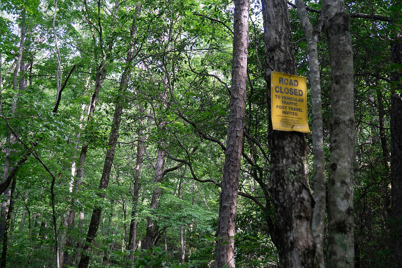 One of the Forest Service's trademarked signs.