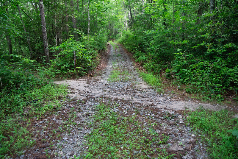 The first flat place on the road is the crossing of The Bartram Trail; about 0.1 mile into your hike.