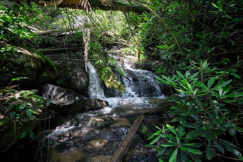 This is the second tier of the waterfall; the third tier is not as closed in but I didn't scramble down for a picture. By now, my reconnaissance had served its purpose so I headed for home.