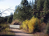 386aa Mickelson Trail