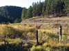 386a Mickelson Trail