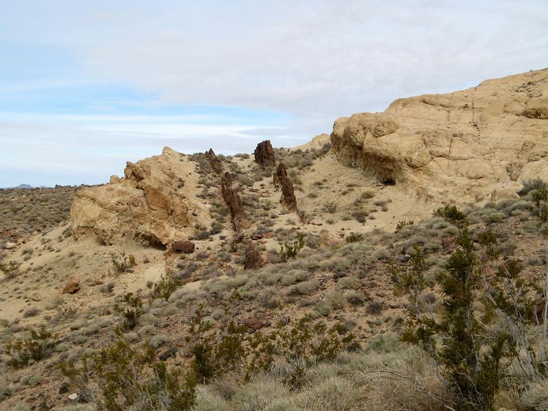 rock backbones