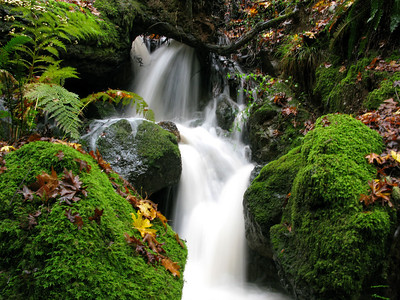 Cataract Falls-12-1-12