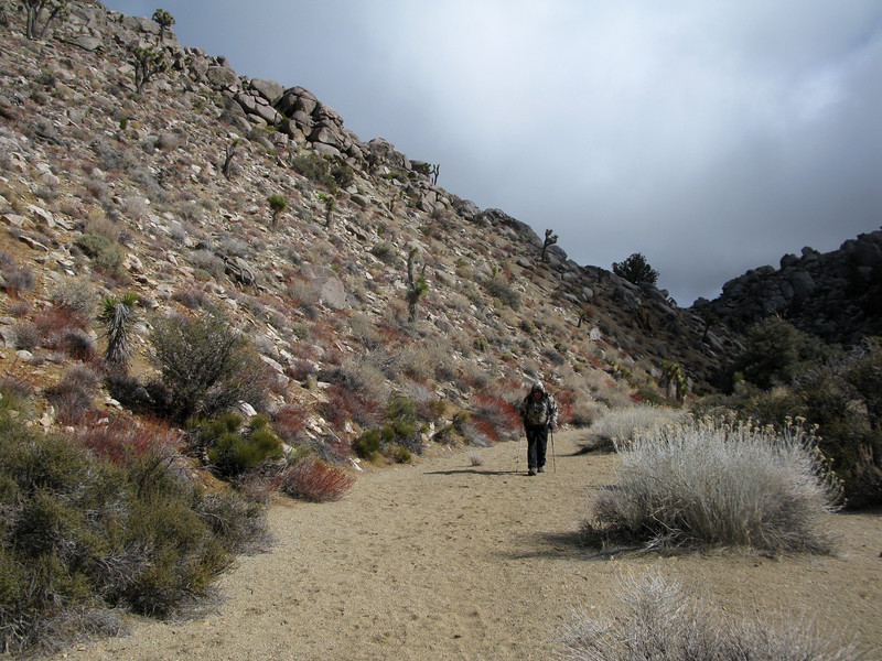 Joe heading up the canyon. He decided not to summit with us but hiked in a ways. Good to see him, it's been a while!