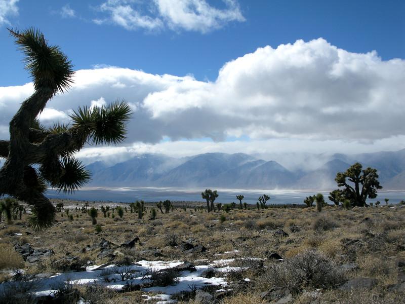Beautiful mesa.