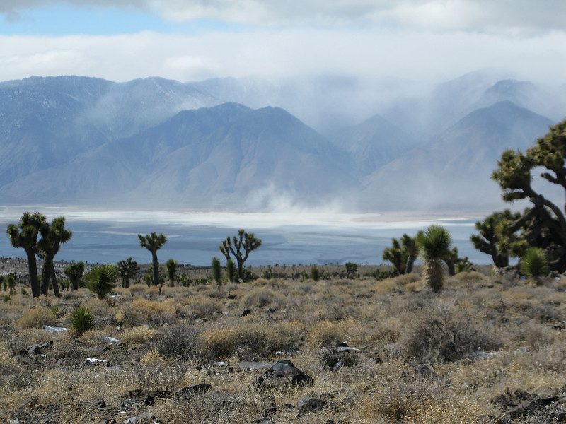 Wind stirring up the dust in Owens Valley