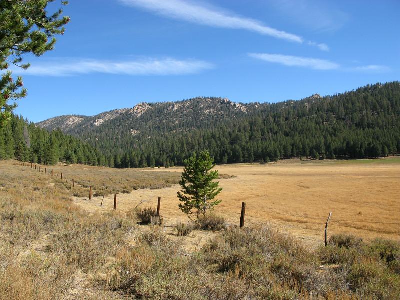 Big Meadow west side.