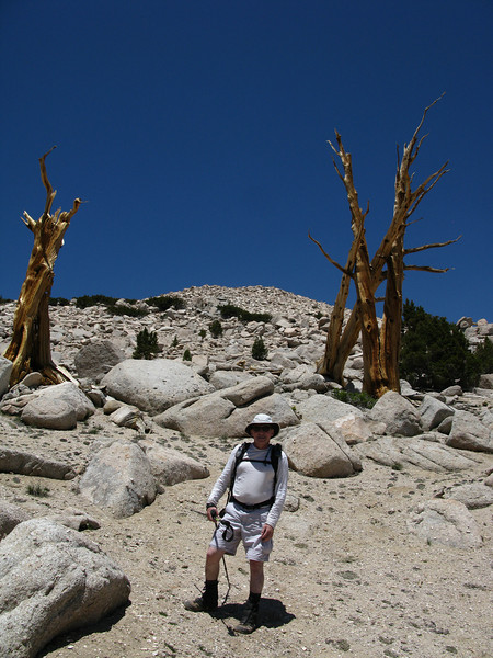 Joe and the Cori tree.