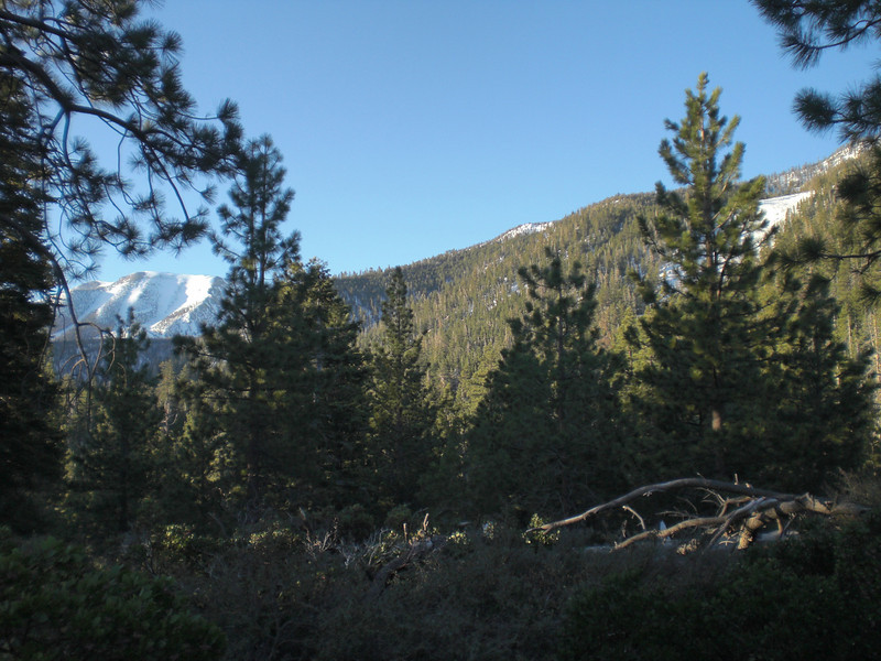 Met up with my friend Alan to do a day hike of San Gorgonio and ski the bowl.