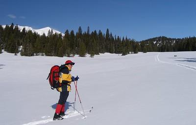 Middle/North Fork Brackett Creek Loop Ski