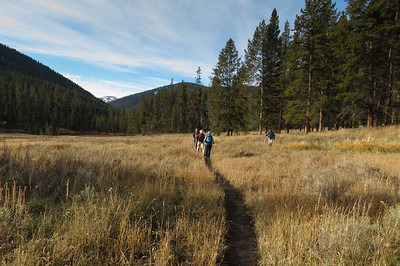 Walking up through a meadow along Specimen Creek on a late Fall Morning.