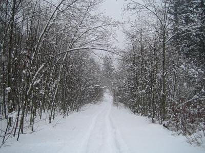 Skiing Taylor Mountain - December '08