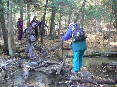 One of several streams we had to cross.  We were all grateful for Peter's help!