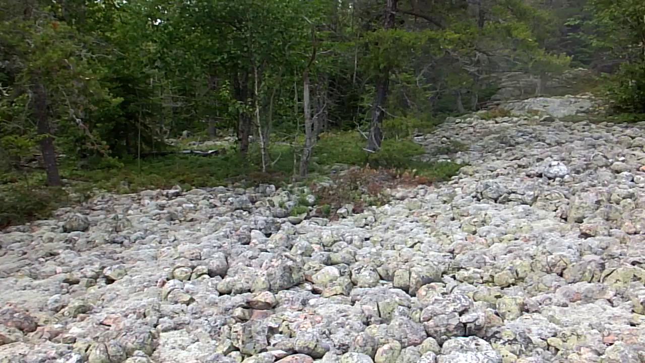 Video of a raised cobble beach