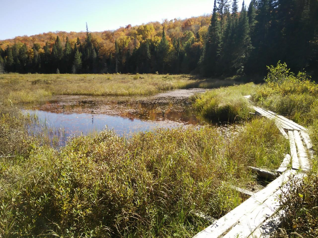 Mink Creek bridge