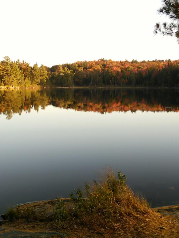 Clara Lake Reflections