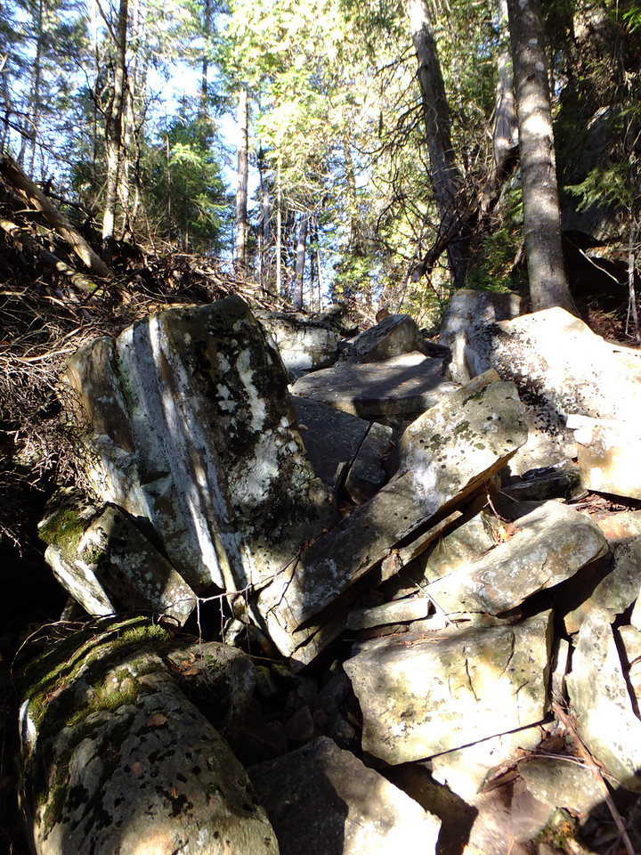 Walked right past this dry stream of boulders.  Then the I lost the trail.  Went back.  Realized this IS the trail!