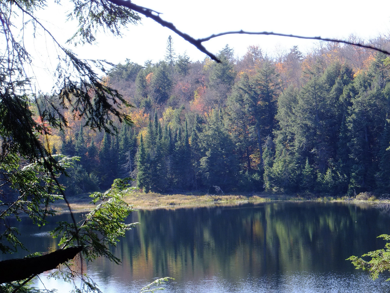The last fall colours on Steepside Lake