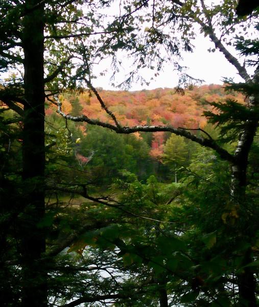 https://photos.smugmug.com/Hiking-trips/Big-Loop-Algonquin-Western-Uplands-Trail-Sept-2018/i-T8kQgPd/0/aee4d3b8/L/fullsizeoutput_671-L.jpg