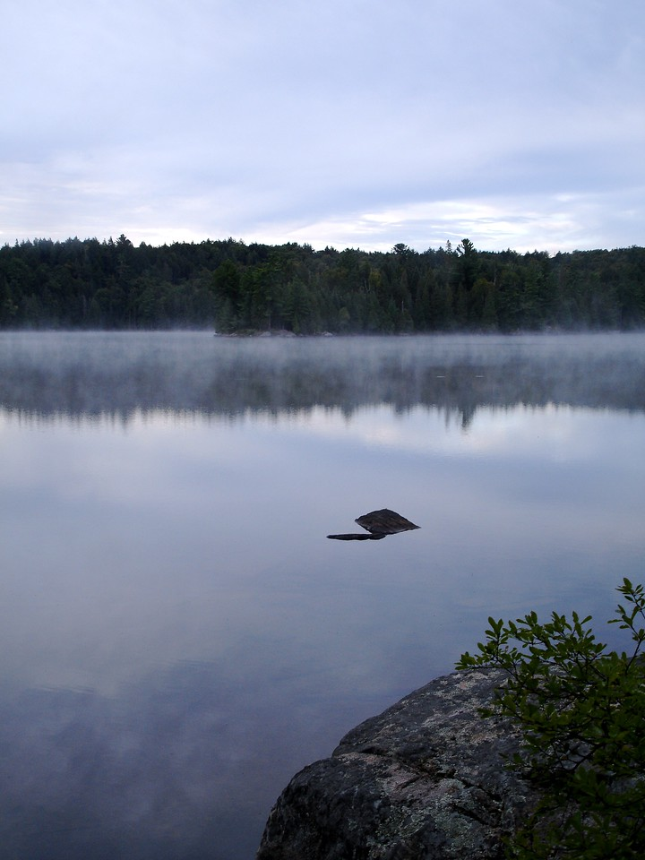Harness Lake, misty morning