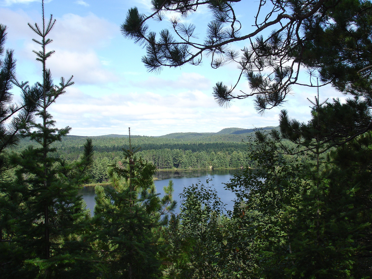 View over Mew Lake area