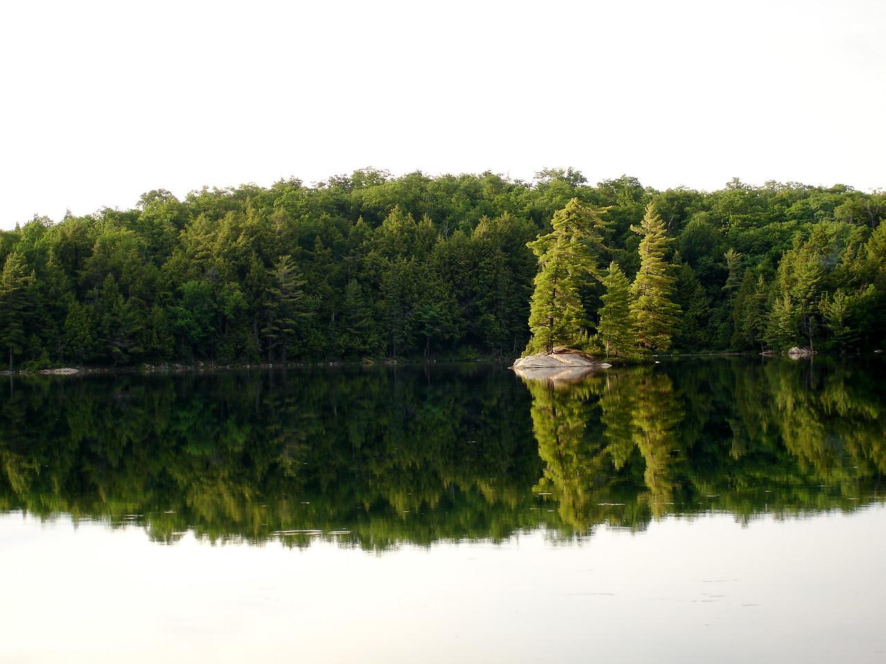 Maggie Lake