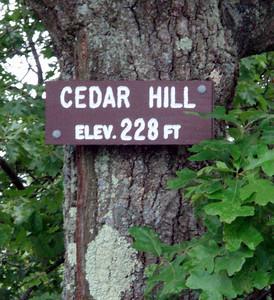 Lynn Woods III - Cedar Hill, Birch Pond, Fuller Hill