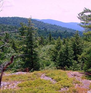 Scarboro Ridge Trail I (July 11)