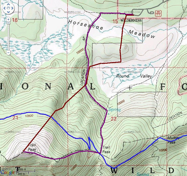 My route:  Purple line is the route using the trail to Trail Pass, then up to Trail Peak.  The brown line is my return route.  Went out into the meadow instead of following the trail because apparently I mistook a bawling cow for a human calling for help.