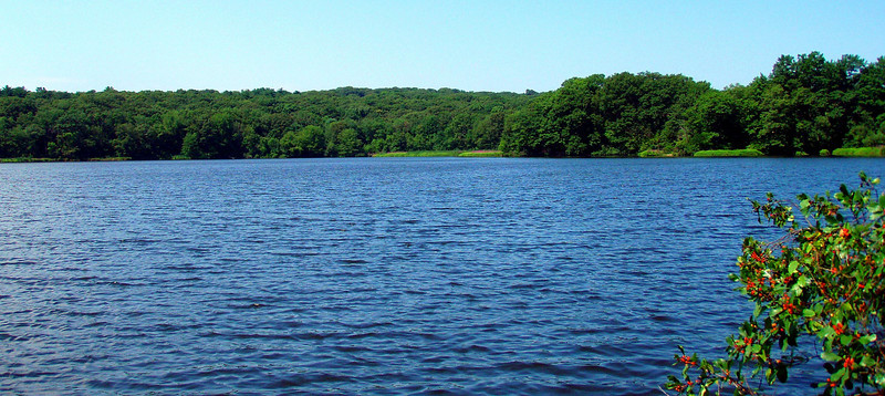 From the north shore of Kendrick Pond - start of the Blue Heron Trail.