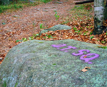 Dogtown, Gloucester - the Babson Boulders (August 22)