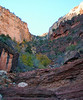 Looking back, up Bright Angel Trail's canyon.
