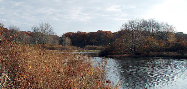 Newton - Charles River to Lost Pond (October 31)