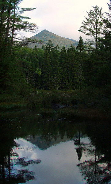 From Black Pond - Owl's Head.