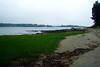 Little Harbor