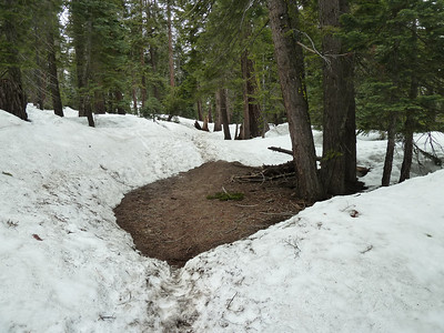 The trail had lots of snow above the spring.