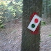 This trail marker made my sight blurry.